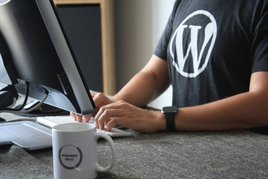 WordPress - Logo - Système de gestion de contenu